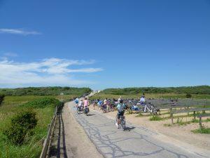 Walcheren vakanties op VisitDomburg - foto van fietsers langs duinen