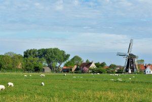 Sea & Sun holiday op Visitdomburg - foto van landschap in zeeland met molen