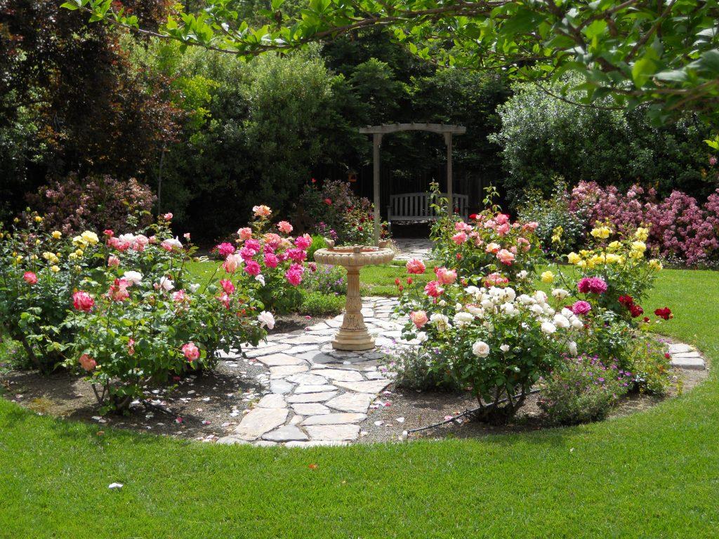 Garden And More VisitDomburg - foto van tuin