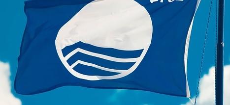 Blauwe Vlag voor strand Domburg - nieuws VisitDomburg